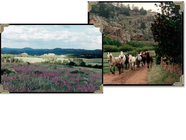 Children kids teens and western guest ranch horse vacation